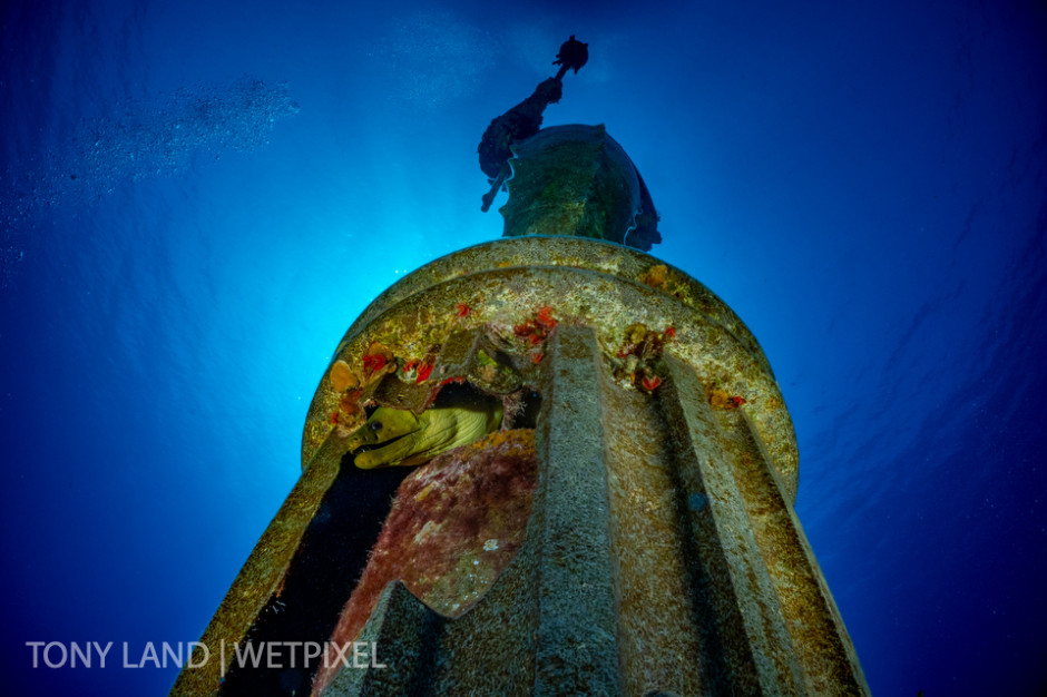 A green moray eel (*Gymnothorax funebris*) hiding inside the Guardian of the Reef statue, Divetech house reef in West Bay, Grand Cayman.