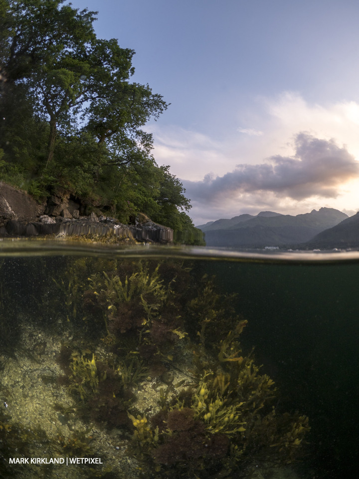 Split-level shot of Loch Long, Scotland.