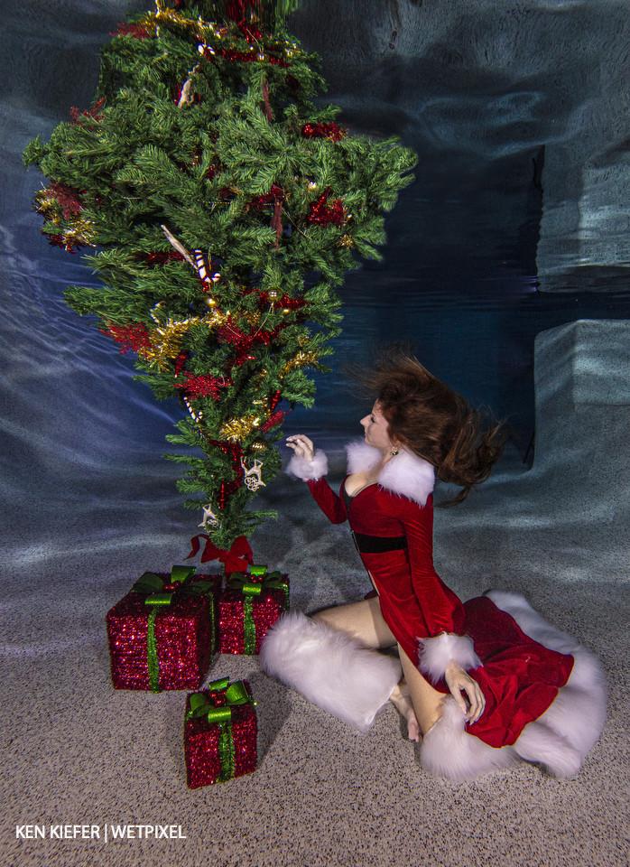 An underwater Christmas scene.