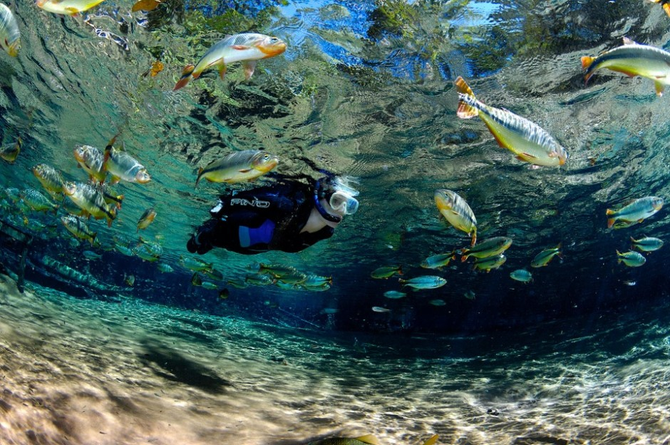 Diving in clear waters of Bonito and Nobres became major tourist attractions in Brazil.