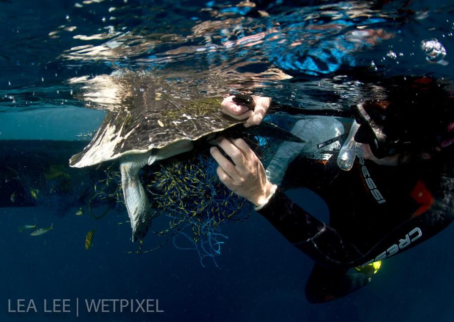 Bettina cutting the fishing net carefully.