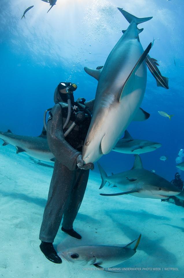 Stephen Frink: Bahamas Underwater Photo Week.