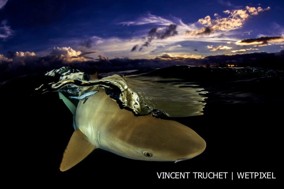 Vincent Truchet: Tuamotu archipelago.