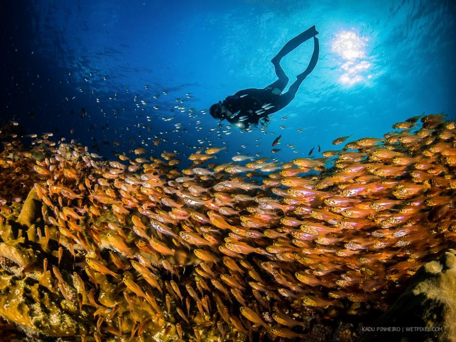 Kadu Pinheiro: Seychelles.