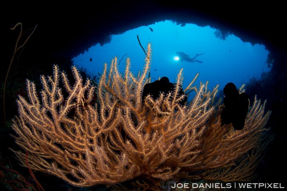A diver explores a underwater cave off the Witu Islands.