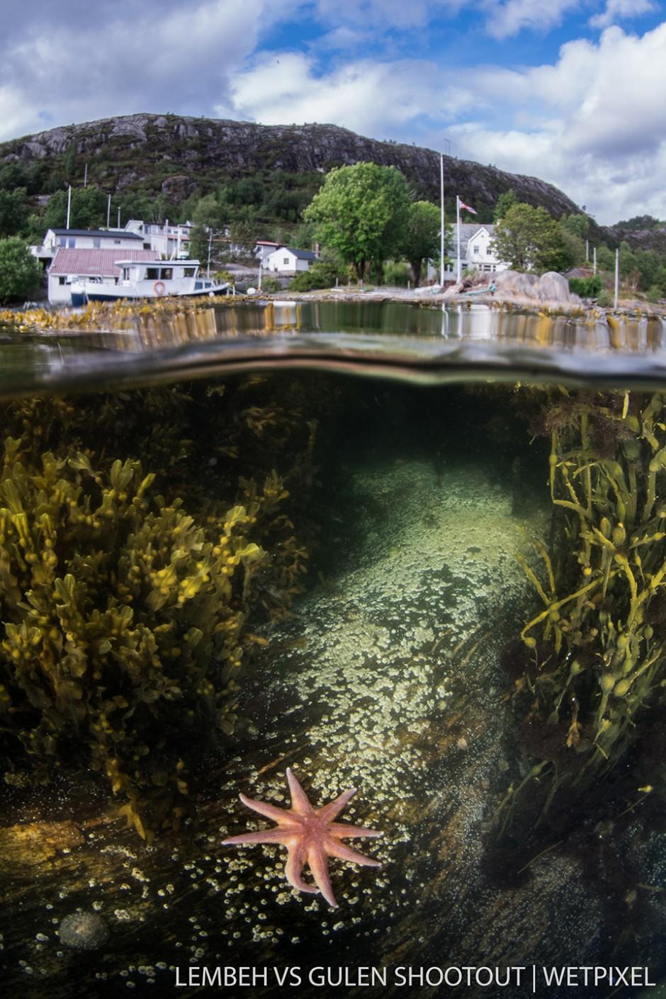 Orjan Sandnes, Gulen Norway, Wide Angle