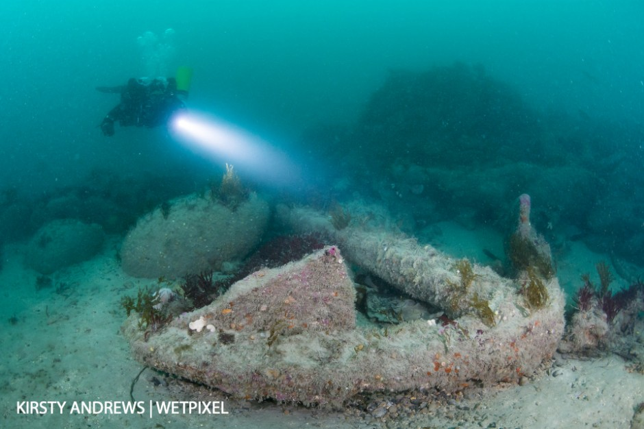 Anchor - wrecks vary from WWII icons to centuries old sites where the only visible remains are canon and anchors.
