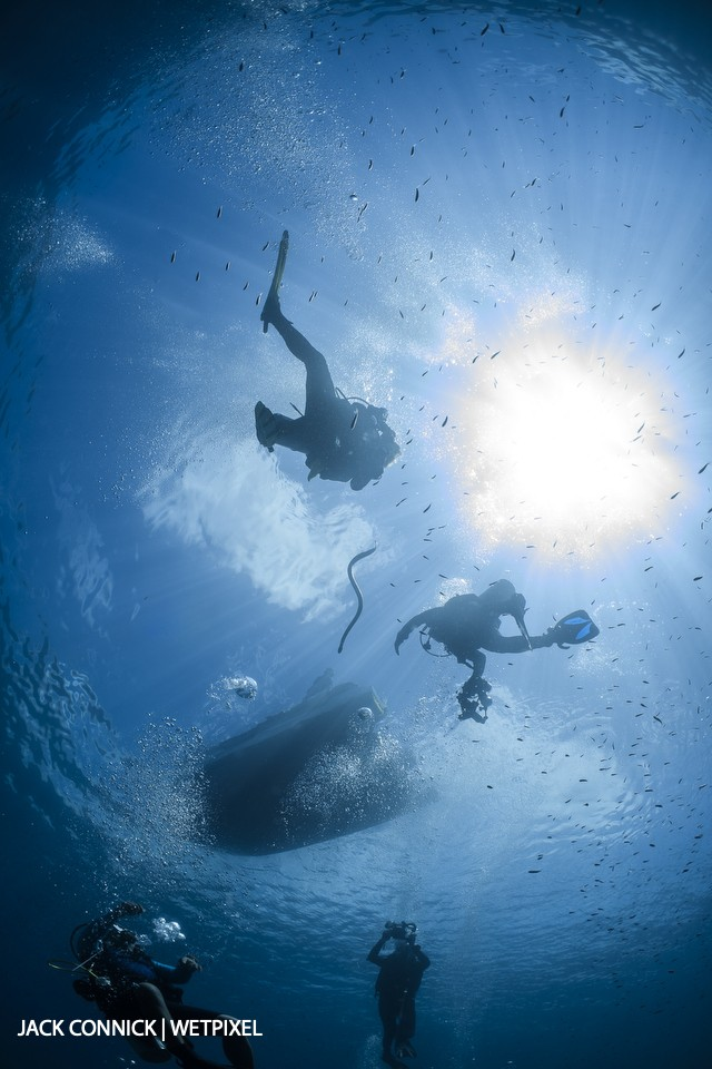 Sea snake at safety stop, Palau Manuk island. 60mm Nikkor & Nauticam WWL wet lens. ISO 200, F/18 @ 1/100 sec.
