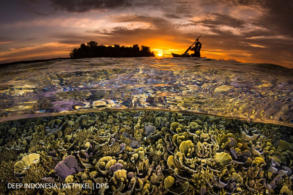 """The overall winner and winner Over-Under category: """"*Papuan Sunset*"""" by Grant Thomas"""