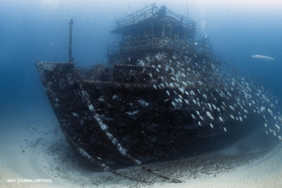 M/V Ana Cecilia wreck off of West Palm Beach. While wreck diving is not one of the Palm Beach Coasts signature traits, there are a few in 70 – 100-foot depth range that makes for a fun dive.