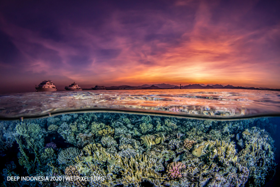 Reefscapes category winner: **Fressia Peng** | *Twilight*