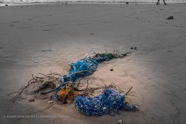 Более 5000000000000 пластиковых частиц плавают рядом с нами