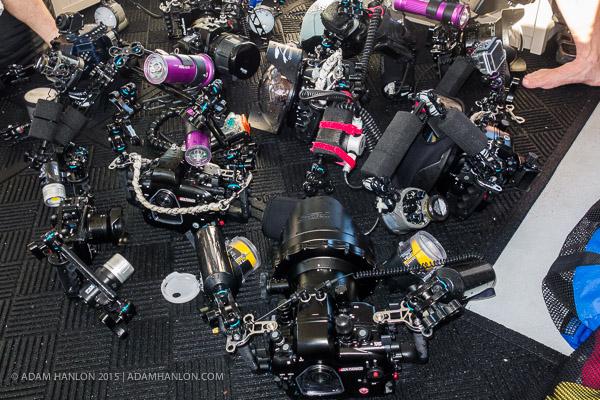 ежегодный доклад о проданных в 2014 году фотокамерах по всему миру