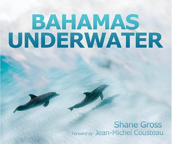 Bahamas Underwater on Wetpixel