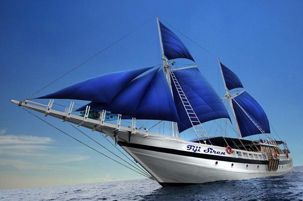 Update on Fiji Siren :: Wetpixel com