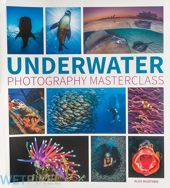 Underwater Photography Masterclass on Wetpixel
