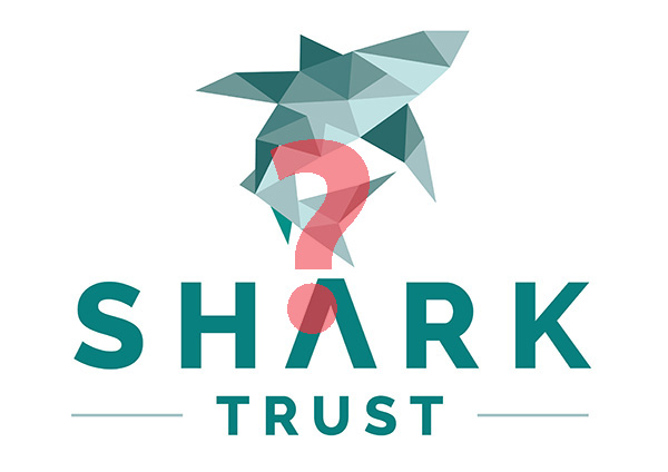 The Shark Trust on Wetpixel