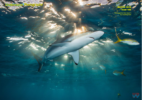 Underwater Photography Magazine on Wetpixel