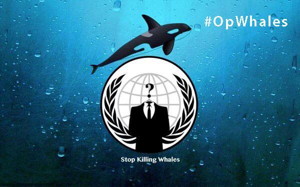 Анонимус против коммерческого забоя китов