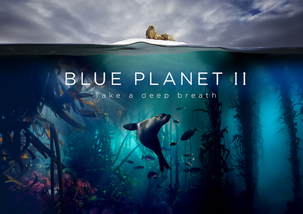 BBC Blue Planet 2 on Wetpixel