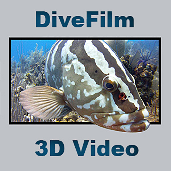 DiveFilm 3D podcasts on Wetpixel