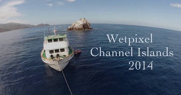 Wetpixel Channel Islands 2014 on Wetpixel