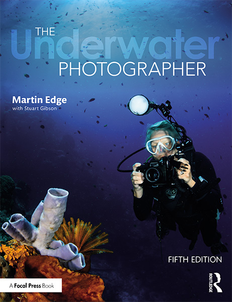 The Underwater Photographer on Wetpixel