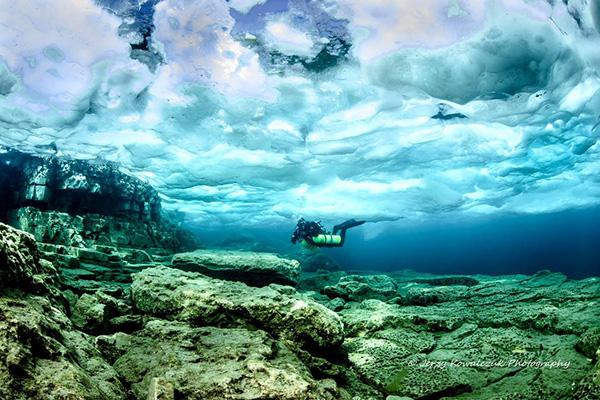 Ежи Ковальчук опубликовал несколько прекрасных подводных снимков