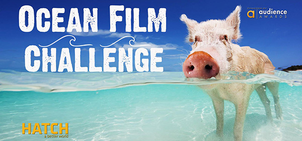 Ocean Film Challenge on Wetpixel