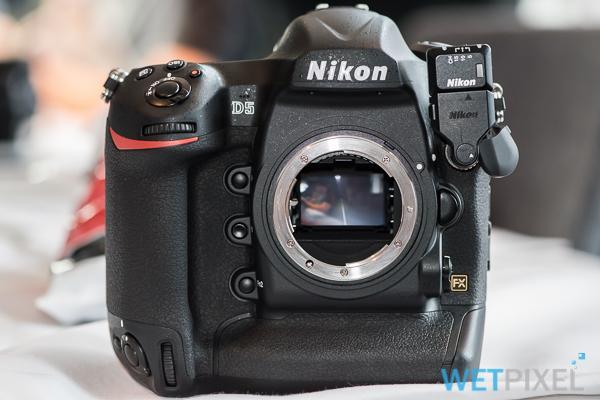 Hands on: Nikon D5 and D500 cameras :: Wetpixel com