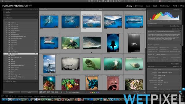 Adobe guide to Optimizing Lightroom Performance :: Wetpixel com