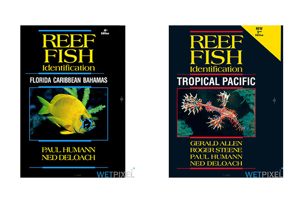 Pdf ebooks reef fish, reef creature and reef coral.