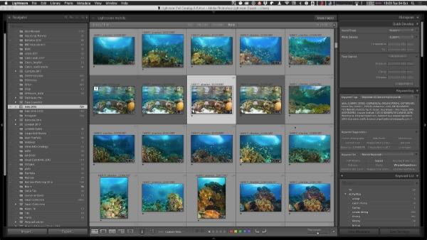An Underwater Photographer's Guide to Lightroom CC 2017 :: Wetpixel com